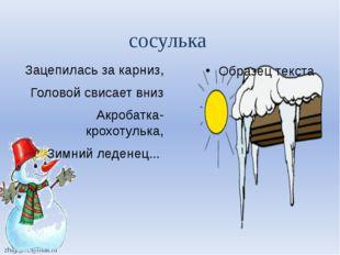 Зацепилась за карниз, Головой свисает вниз Акробатка-крохотулька, Зимний леде