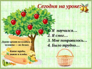 Дерево ценят по плодам, а человека — по делам. Какие труды, такие и плоды. 1.