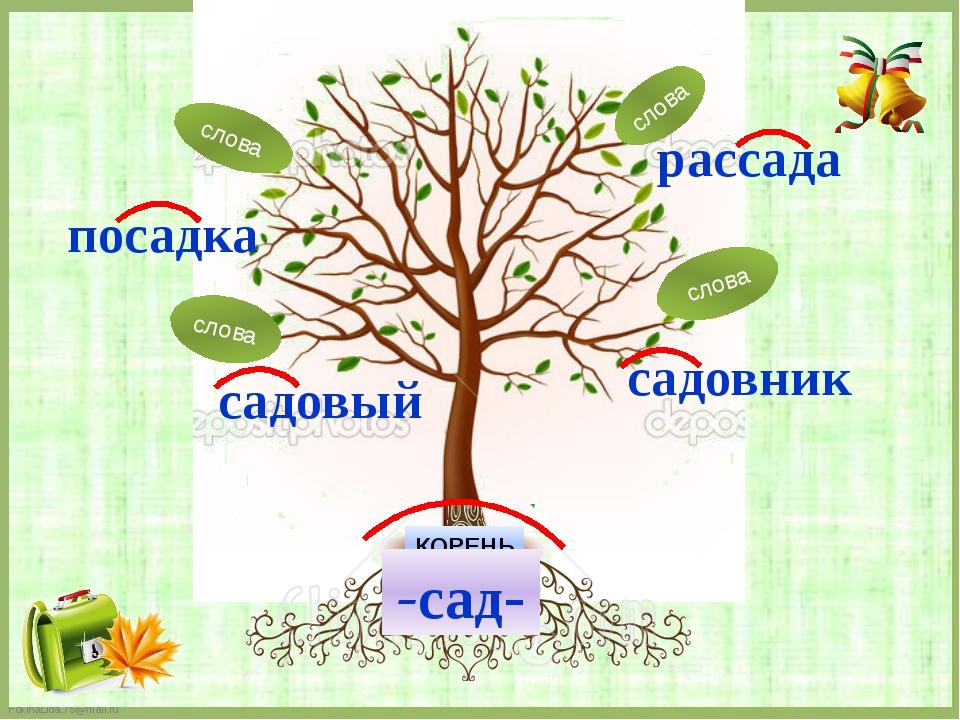КОРЕНЬ -сад- рассада посадка садовый садовник слова слова слова слова FokinaL...