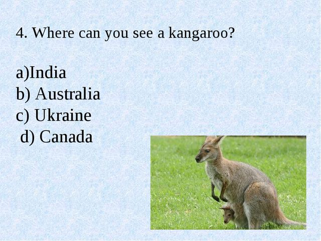 4. Where can you see a kangaroo? a)India b) Australia c) Ukraine d) Canada