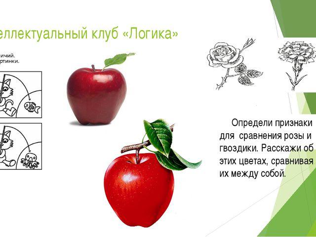 Интеллектуальный клуб «Логика» Определи признаки для сравнения розы и гвоздик...