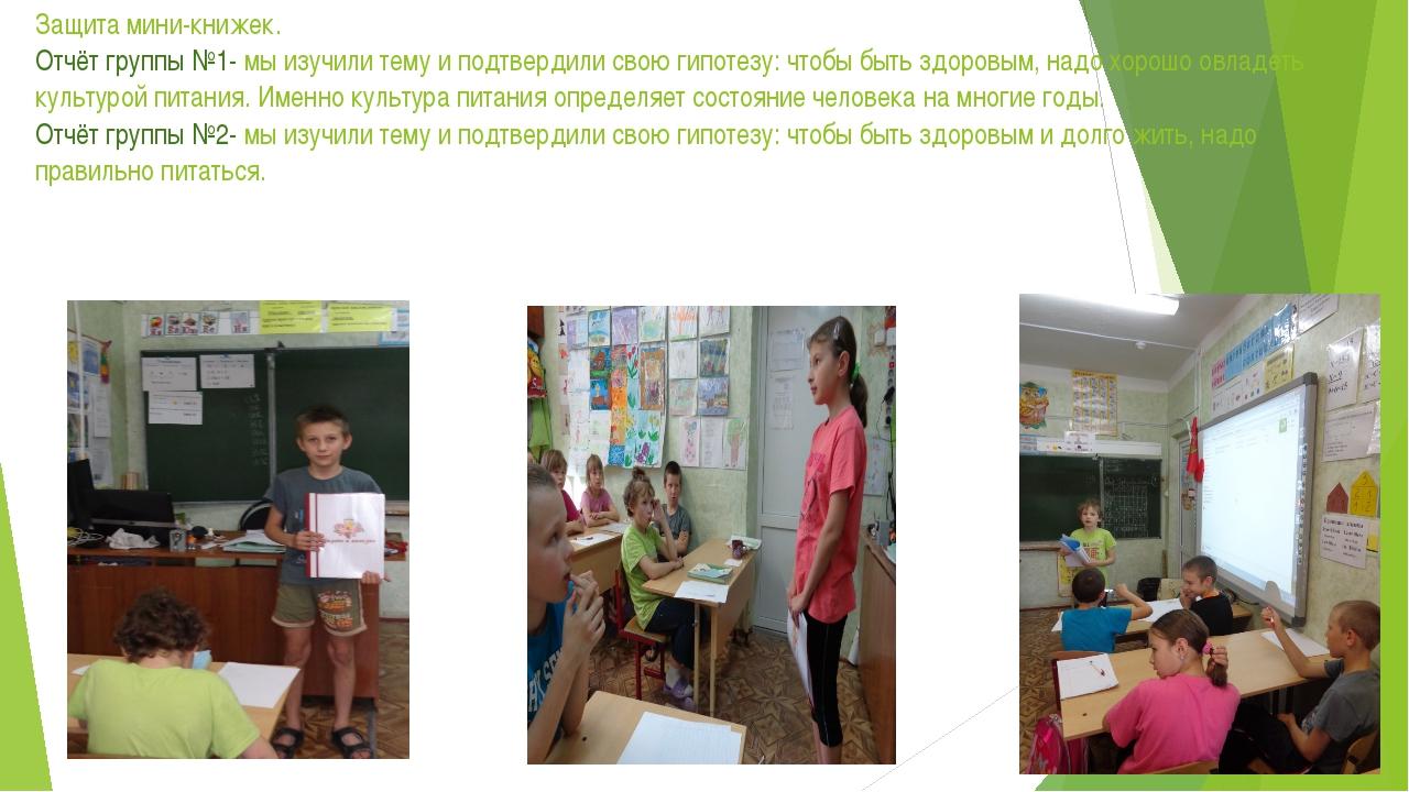 Защита мини-книжек. Отчёт группы №1- мы изучили тему и подтвердили свою гипот...