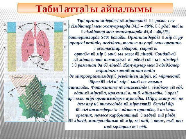 Тірі организмдердегі көміртектің құрамы : су өсімдіктері мен жануарларда 34,...