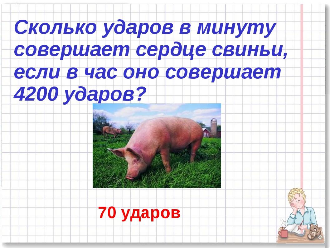 Сколько ударов в минуту совершает сердце свиньи, если в час оно совершает 420...