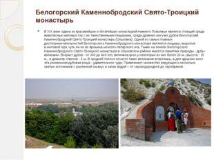Белогорский Каменнобродский Свято-Троицкий монастырь В XIX веке одним из крас