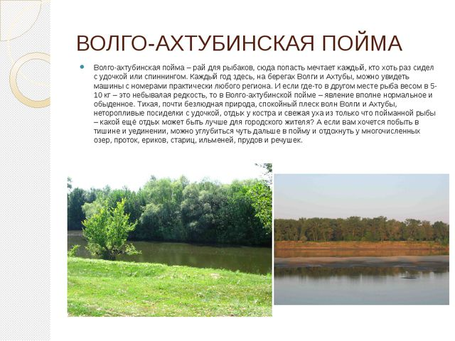 ВОЛГО-АХТУБИНСКАЯ ПОЙМА Волго-ахтубинская пойма – рай для рыбаков, сюда попас...
