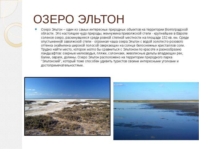 ОЗЕРО ЭЛЬТОН Озеро Эльтон – один из самых интересных природных объектов на те...
