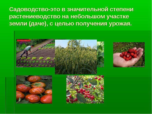 Садоводство-это в значительной степени растениеводство на небольшом участке з...