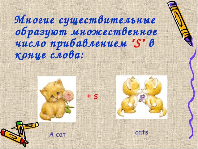 """Многие существительные образуют множественное число прибавлением """"S"""" в конце..."""