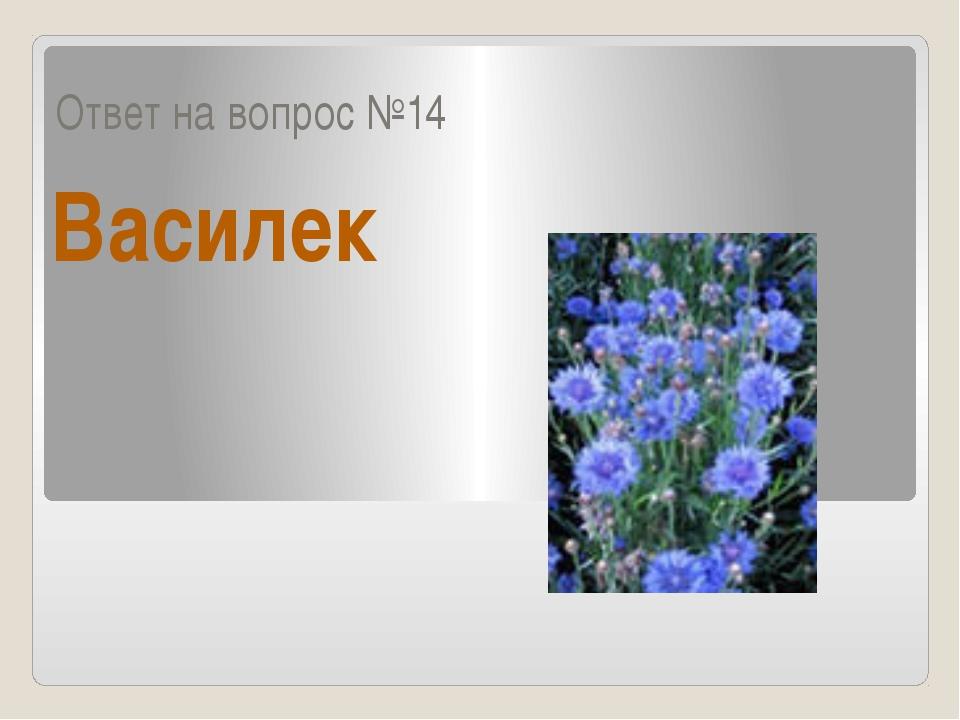 Ответ на вопрос №14 Василек