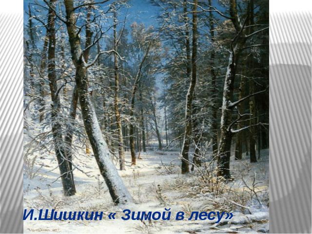 И.Шишкин « Зимой в лесу»
