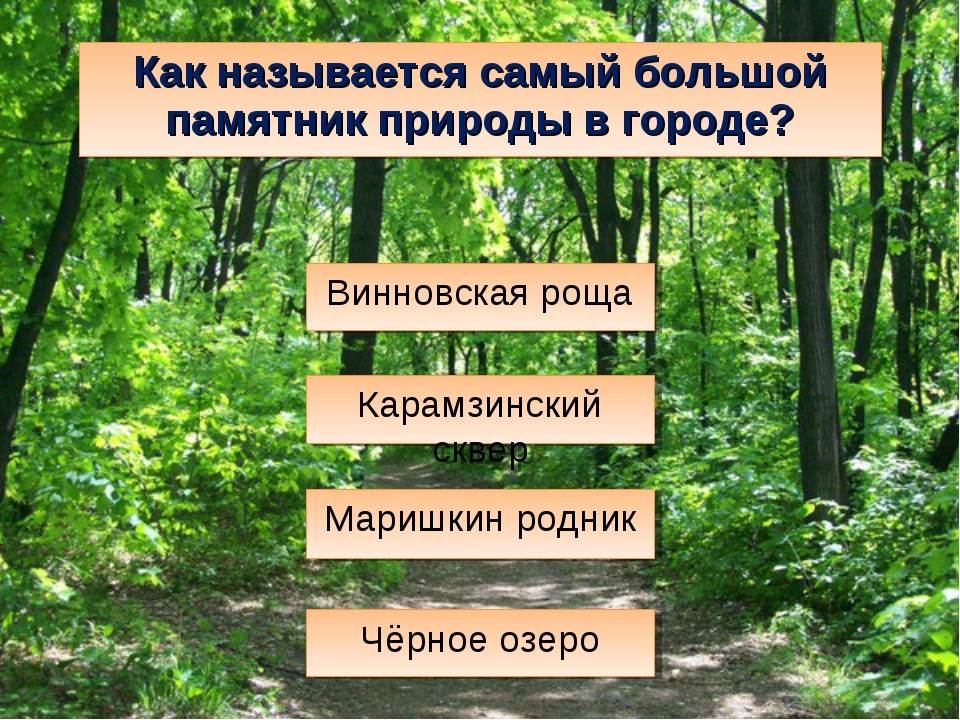Как называется самый большой памятник природы в городе? Маришкин родник Чёрно...