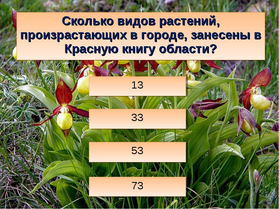Сколько видов растений, произрастающих в городе, занесены в Красную книгу обл...