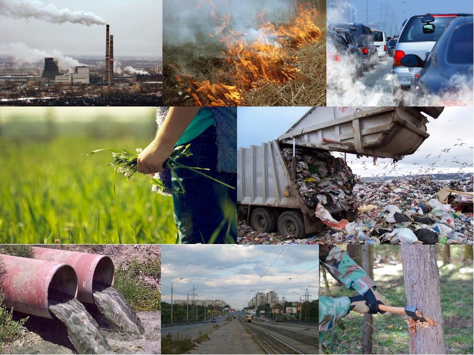 Картинка экологическая проблема