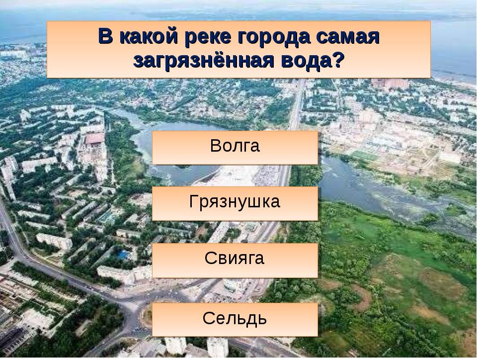В какой реке города самая загрязнённая вода? Свияга Сельдь Волга Грязнушка