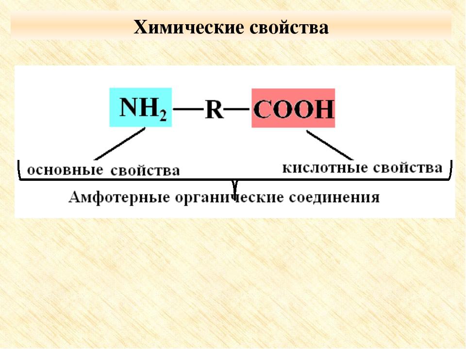 Получение аминокислот Гидролиз белков под влиянием ферментов, кислот или щело...