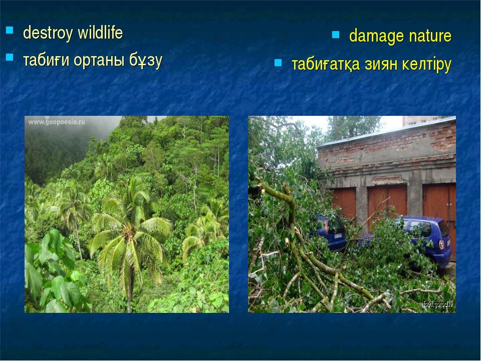 destroy wildlife табиғи ортаны бұзу damage nature табиғатқа зиян келтіру