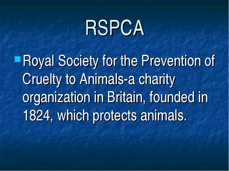 RSPCA Royal Society for the Prevention of Cruelty to Animals-a charity organi...