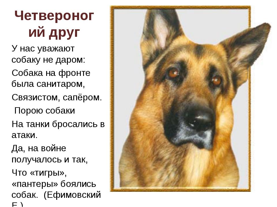 Сонник. подарить собаку