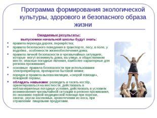 Программа формирования экологической культуры, здорового и безопасного образа