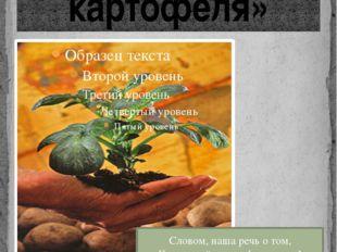 «Из истории картофеля» Словом, наша речь о том, Как пришёл картофель в дом! О