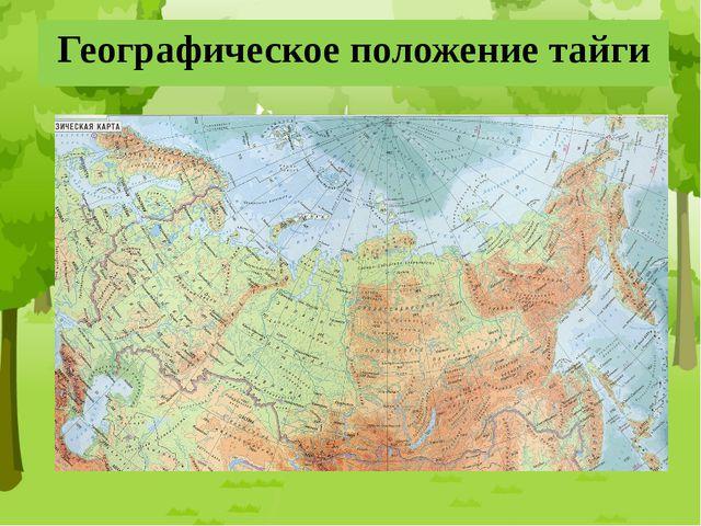 Географическое положение тайги
