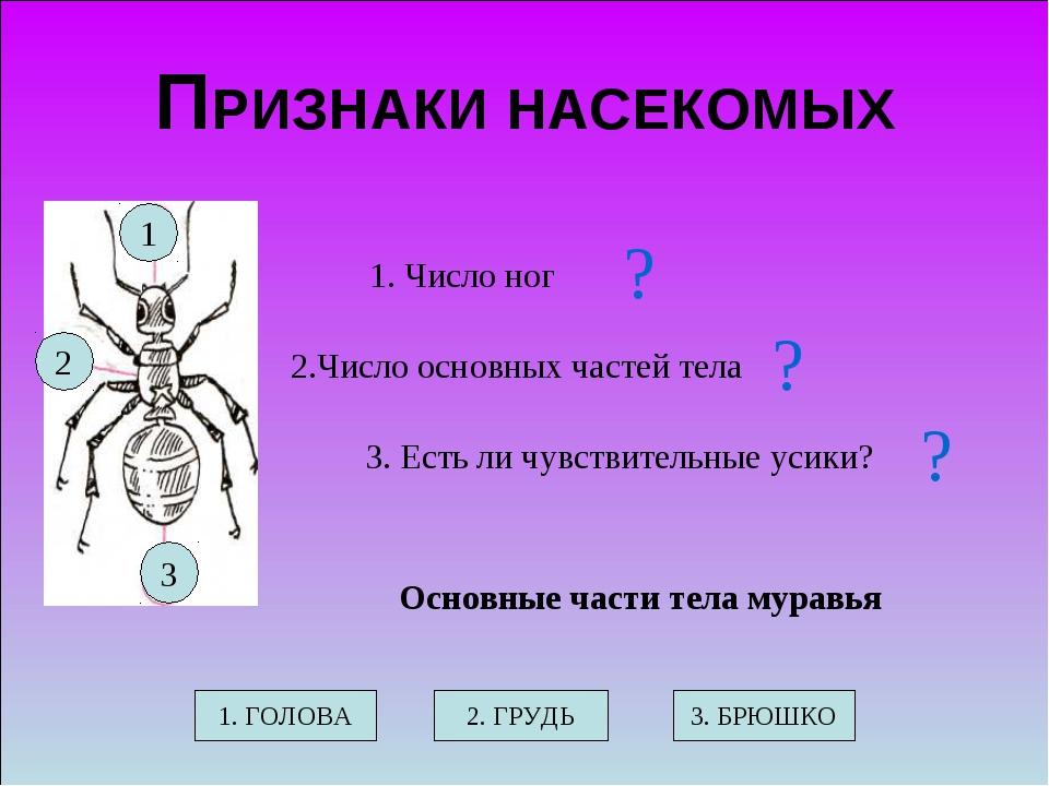 ПРИЗНАКИ НАСЕКОМЫХ 1. Число ног 2.Число основных частей тела 3. Есть ли чувст...