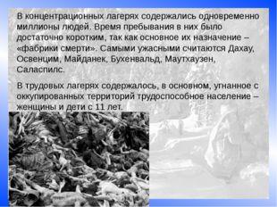 В концентрационных лагерях содержались одновременно миллионы людей. Время пре