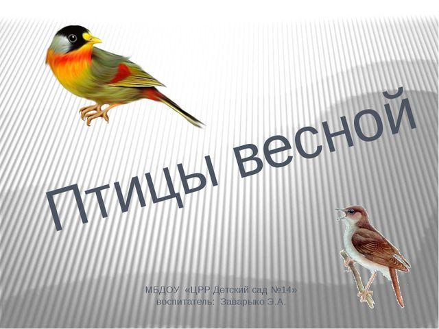 МБДОУ «ЦРР Детский сад №14» воспитатель: Заварыко Э.А. Птицы весной