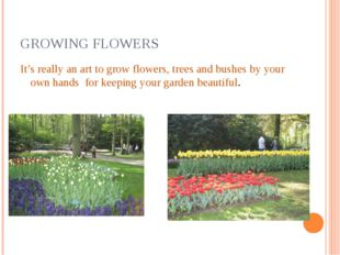 GROWING FLOWERS It's really an art to grow flowers, trees and bushes by your