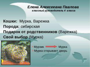 Елена Алексеевна Павлова классный руководитель 4 класса Кошки: Мурка, Варежка