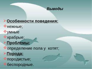 Выводы Особенности поведения: нежные; умные храбрые; Проблемы: определение по