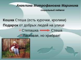 Ангелина Митрофановна Маринина социальный педагог Кошка Стеша (есть курочк