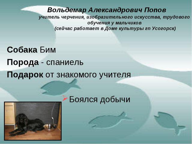 Вольдемар Александрович Попов учитель черчения, изобразительного искусства,...