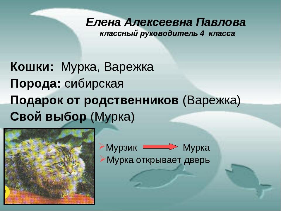 Елена Алексеевна Павлова классный руководитель 4 класса Кошки: Мурка, Варежка...