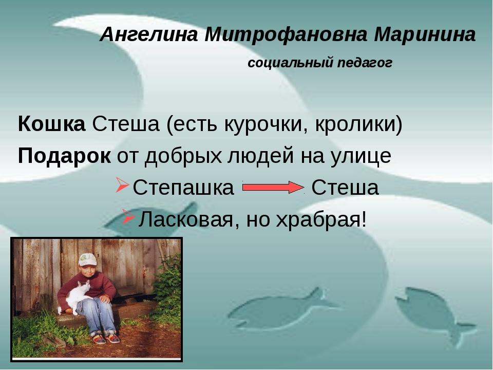 Ангелина Митрофановна Маринина социальный педагог Кошка Стеша (есть курочк...