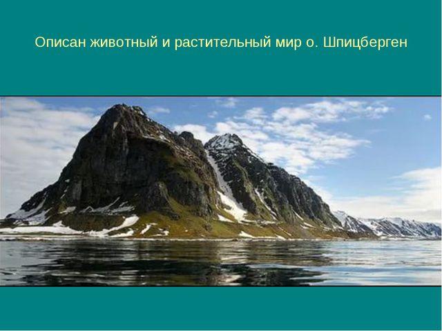 Описан животный и растительный мир о. Шпицберген