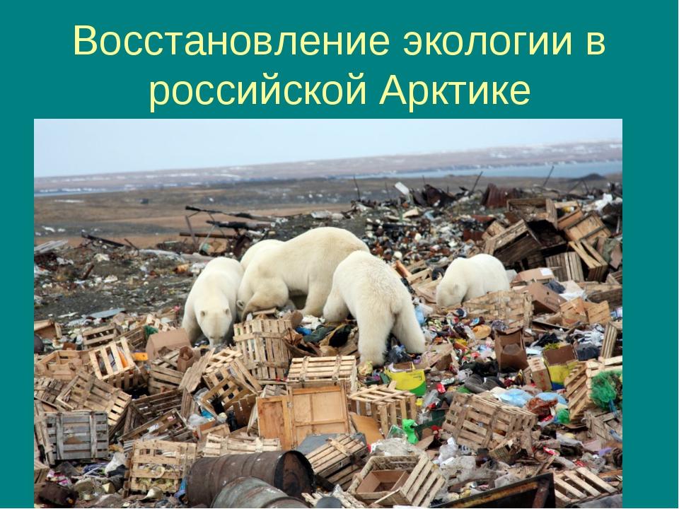 Восстановление экологии в российской Арктике