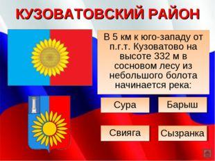 КУЗОВАТОВСКИЙ РАЙОН В 5 км к юго-западу от п.г.т. Кузоватово на высоте 332 м