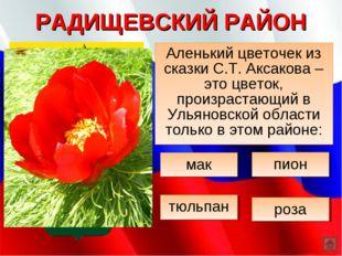 РАДИЩЕВСКИЙ РАЙОН Аленький цветочек из сказки С.Т. Аксакова – это цветок, про
