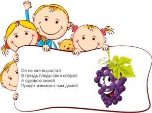 Он на юге вырастал В гроздь плоды свои собрал. А суровою зимой Придет изюмом