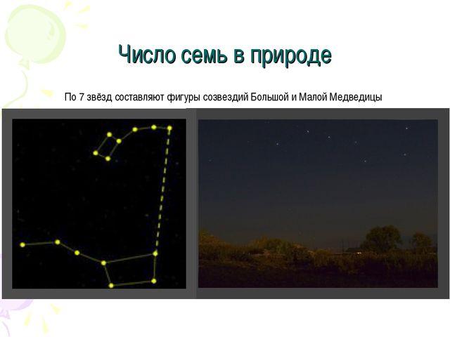 Число семь в природе По 7 звёзд составляют фигуры созвездий Большой и Малой М...