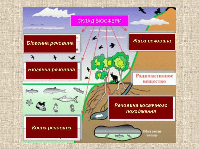 Жива речовина Біогенна речовина Косна речовина Біогенна речовина Речовина ко...