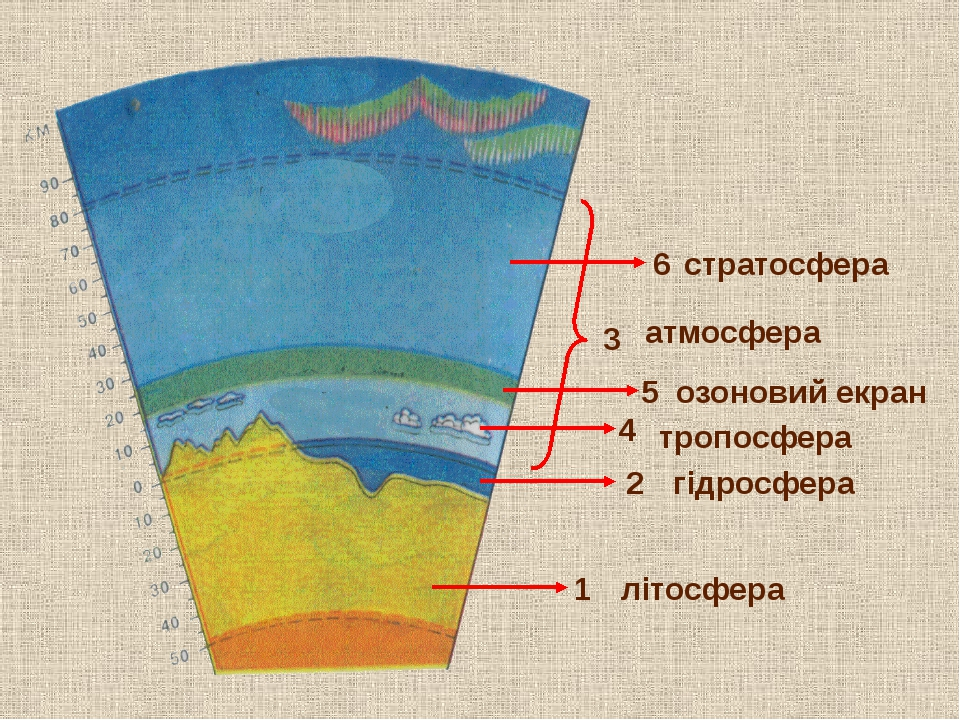 1 5 4 2 літосфера атмосфера озоновий екран стратосфера 3 гідросфера тропосфе...