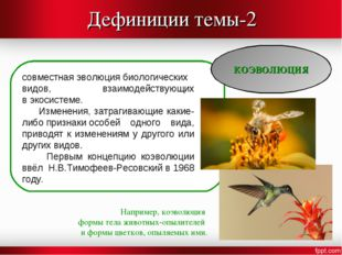 Дефиниции темы-2 КОЭВОЛЮЦИЯ совместнаяэволюциябиологических видов, взаимоде