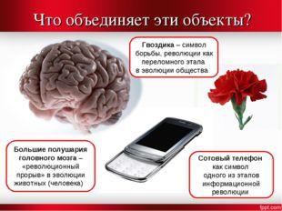 Что объединяет эти объекты? Большие полушария головного мозга – «революционны