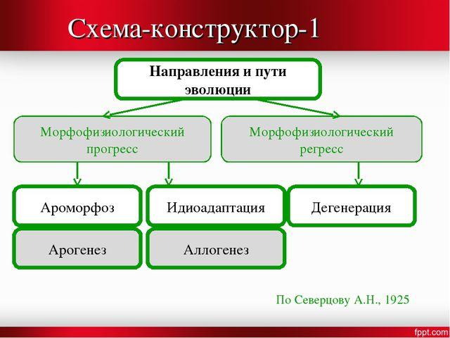Схема-конструктор-1 Направления и пути эволюции Морфофизиологический прогресс...