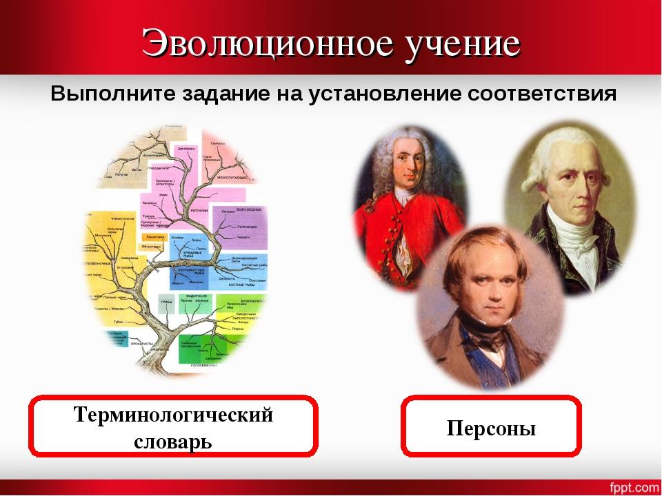 Эволюционное учение Выполните задание на установление соответствия Персоны Те...