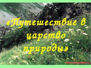 «Путешествие в царство природы»