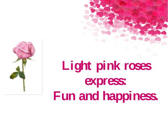 Light pink roses express: Fun and happiness.